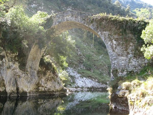 Puente_La_Vidre_Web